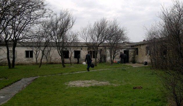 В Феодосии начали строить пункт стерилизации бездомных животных: кирпичи кладет мэр (ВИДЕО), фото-1