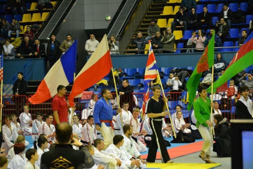Рукопашники из Кривого Рога участвовали в Олимпиаде (ФОТО), фото-6