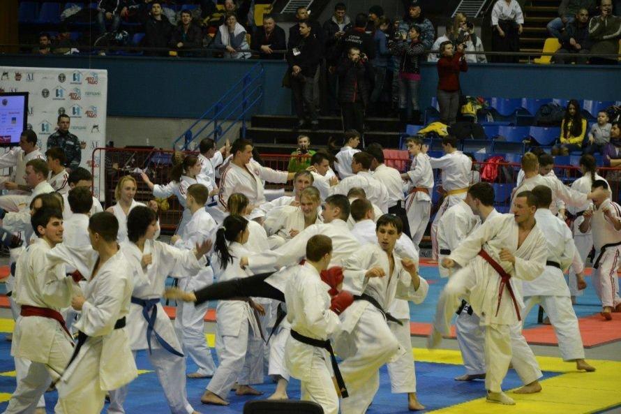 Рукопашники из Кривого Рога участвовали в Олимпиаде (ФОТО), фото-5