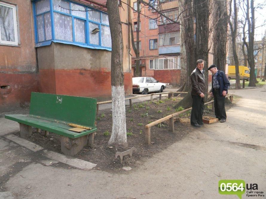 Жители Кривого Рога вышли на уборку придомовых территорий. На ЖЭК никто не надеется (ФОТОРЕПОРТАЖ), фото-6
