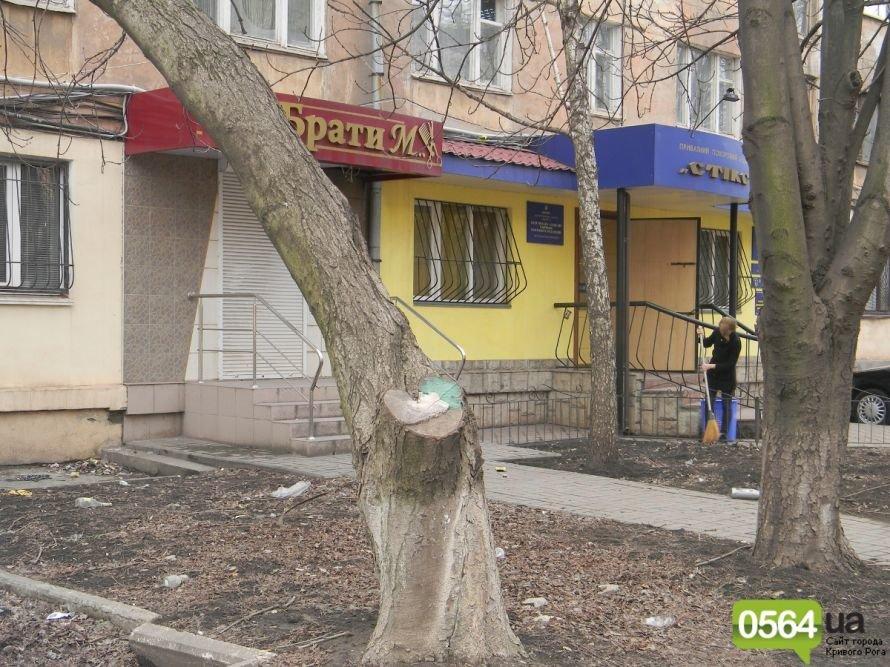Жители Кривого Рога вышли на уборку придомовых территорий. На ЖЭК никто не надеется (ФОТОРЕПОРТАЖ), фото-3