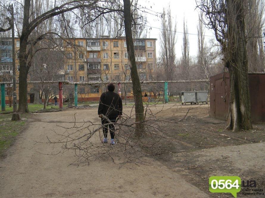 Жители Кривого Рога вышли на уборку придомовых территорий. На ЖЭК никто не надеется (ФОТОРЕПОРТАЖ), фото-1