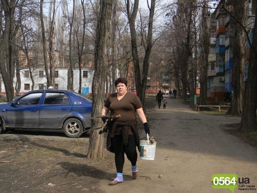 Жители Кривого Рога вышли на уборку придомовых территорий. На ЖЭК никто не надеется (ФОТОРЕПОРТАЖ), фото-8