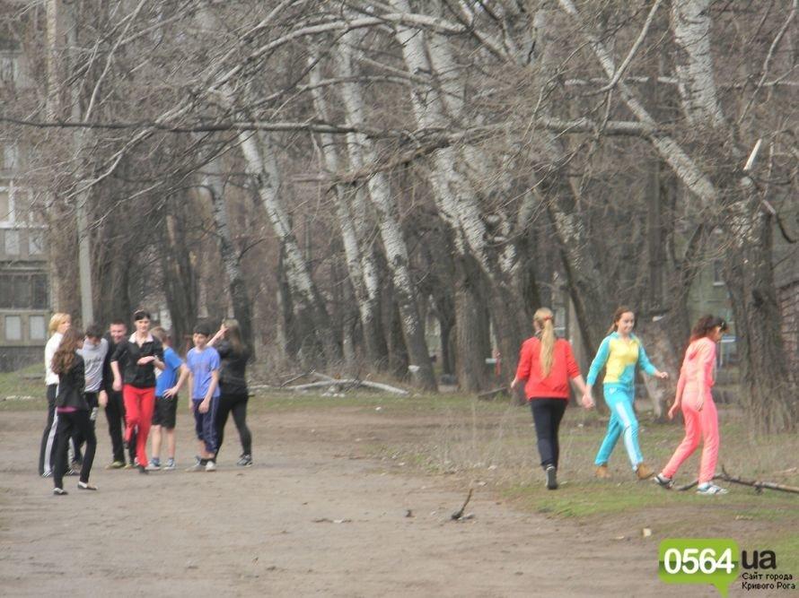 Жители Кривого Рога вышли на уборку придомовых территорий. На ЖЭК никто не надеется (ФОТОРЕПОРТАЖ), фото-2