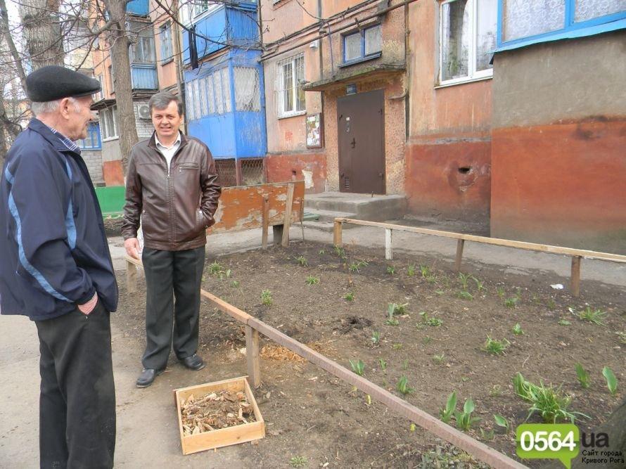 Жители Кривого Рога вышли на уборку придомовых территорий. На ЖЭК никто не надеется (ФОТОРЕПОРТАЖ), фото-7