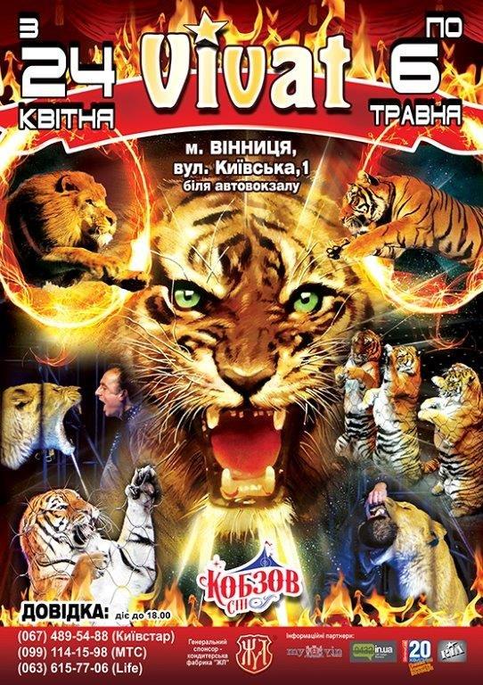 Виват Тигры