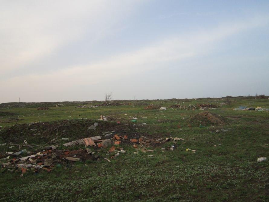 В Володарском районе стихийная свалка «подползает» к жилым домам, фото-2