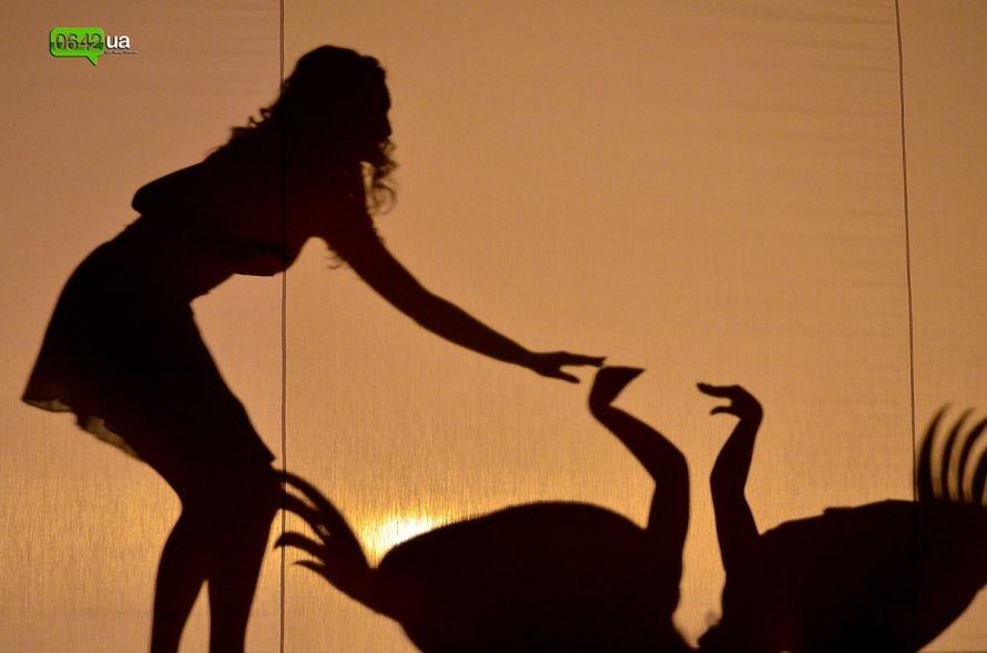 На конкурсе красоты «Мисс Луганщина 2013» бушевали страсти 5-ти стихий (ФОТО), фото-14