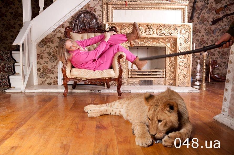 На одесских фотосессиях льва бьют милицейской дубинкой и «усмиряют» уколами (Фото), фото-1