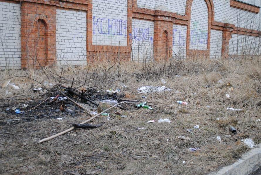 Ульяновск - мусорная столица?, фото-1