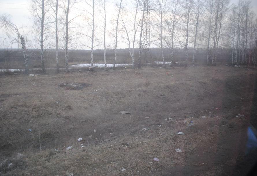 Ульяновск - мусорная столица?, фото-2