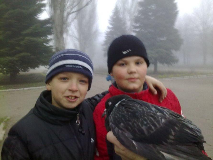 Вместе легче и... Мариупольцы спасли голубя из плена электропроводов  (ФОТО), фото-3
