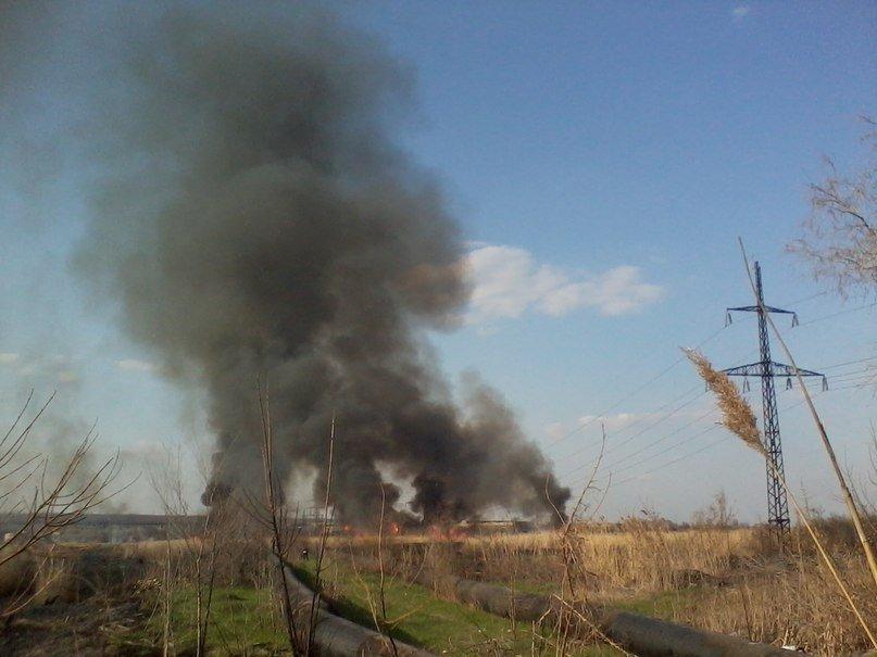 В Луганске снова горел камыш. На сей раз - в районе «Лугансктепловоза» (ФОТО), фото-1