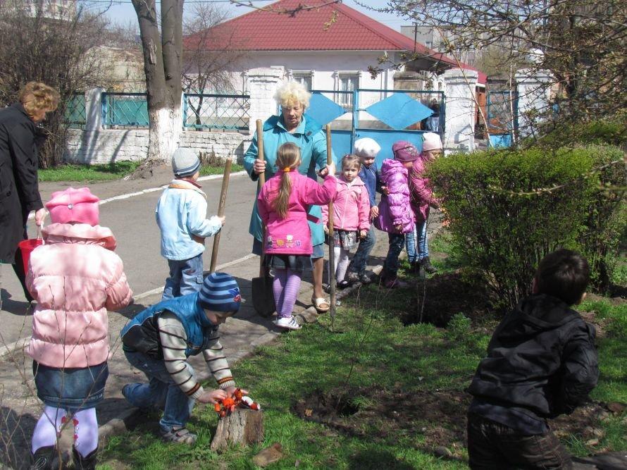 В Мариуполе дети высадили березовую аллею (ФОТО), фото-1