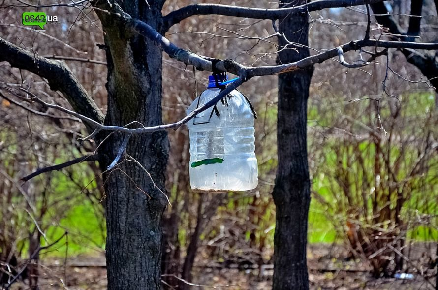 Луганчане помогают коммунальным службам загрязнять парк «Дружба» (ФОТО), фото-18
