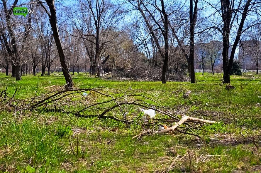Луганчане помогают коммунальным службам загрязнять парк «Дружба» (ФОТО), фото-2