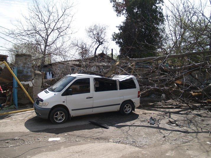 В Симферополе упавшие деревья раздавили три авто (ФОТО, ВИДЕО), фото-1