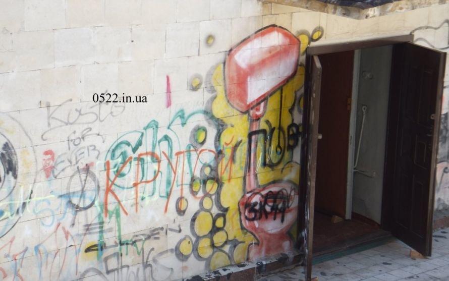 Уличные художества захватили Кировоград. Фото, фото-1