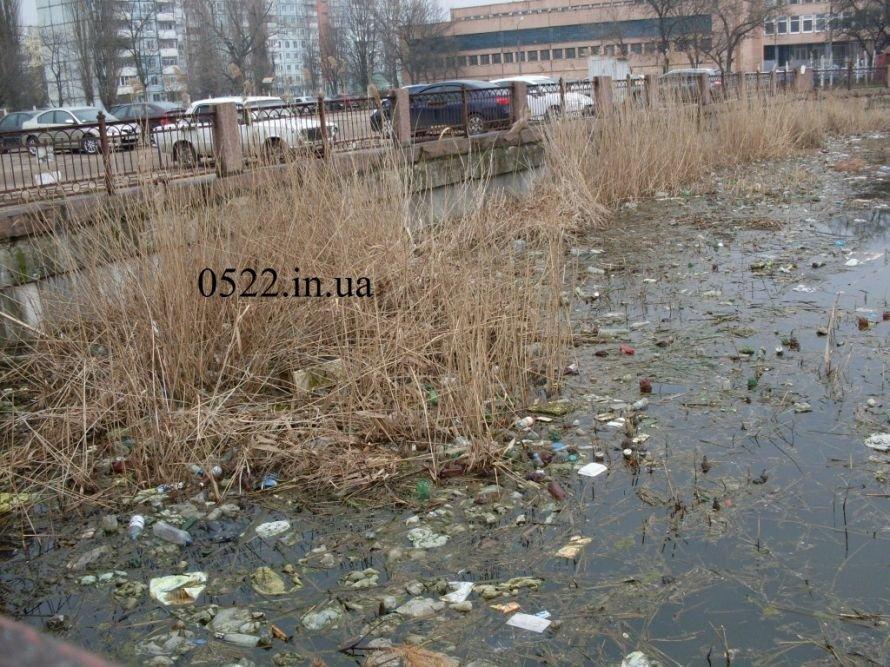 Главная река Кировограда наполнена мусором. Фото, фото-1