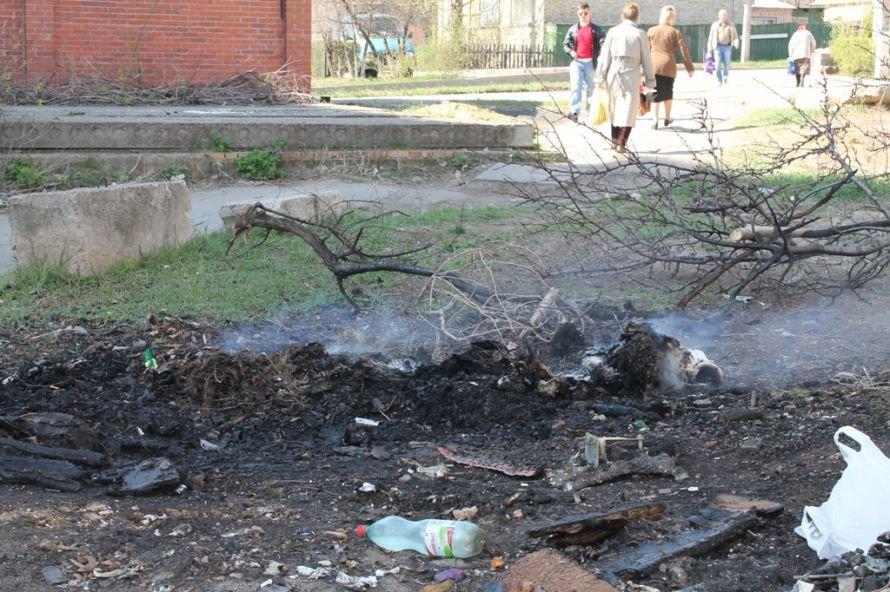 В артемовском дворе сгорели четыре контейнера. «Ремондис» опять считает убытки, фото-3