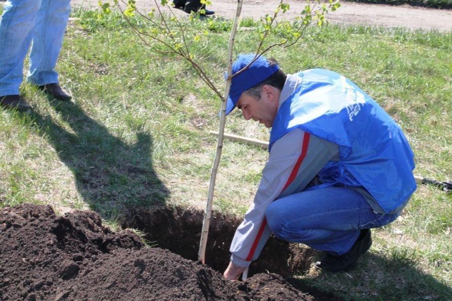 Сергей Клюев принял участие в высадке березовой аллеи в Артемовске (ФОТО), фото-10