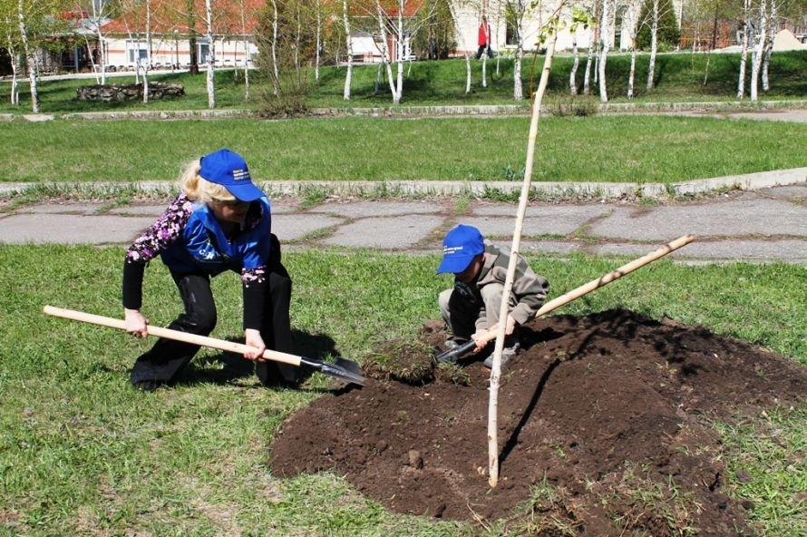 Сергей Клюев принял участие в высадке березовой аллеи в Артемовске (ФОТО), фото-7