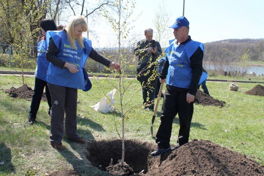 Сергей Клюев принял участие в высадке березовой аллеи в Артемовске (ФОТО), фото-4