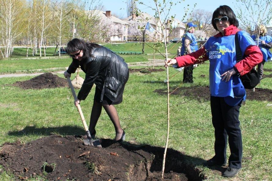 Сергей Клюев принял участие в высадке березовой аллеи в Артемовске (ФОТО), фото-13