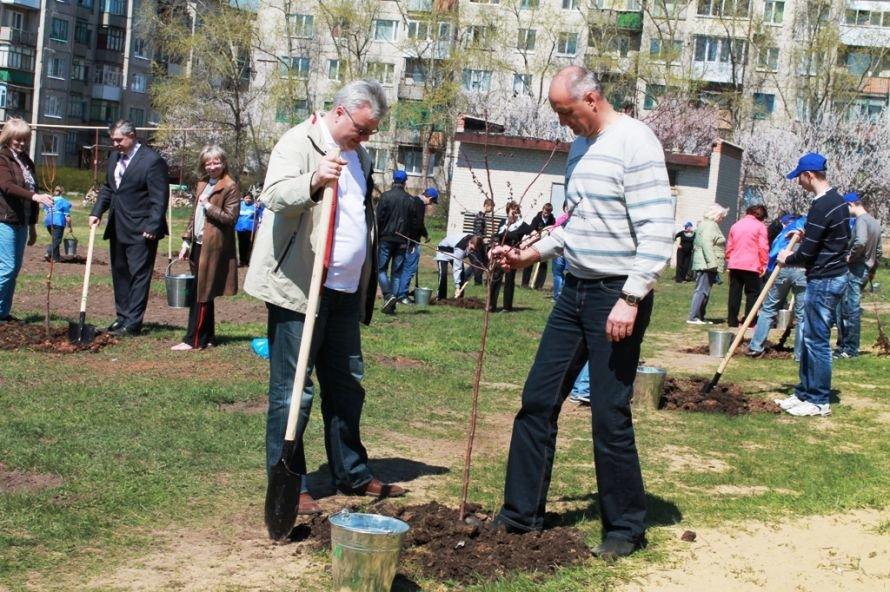 Сергей Клюев принял участие в высадке березовой аллеи в Артемовске (ФОТО), фото-15