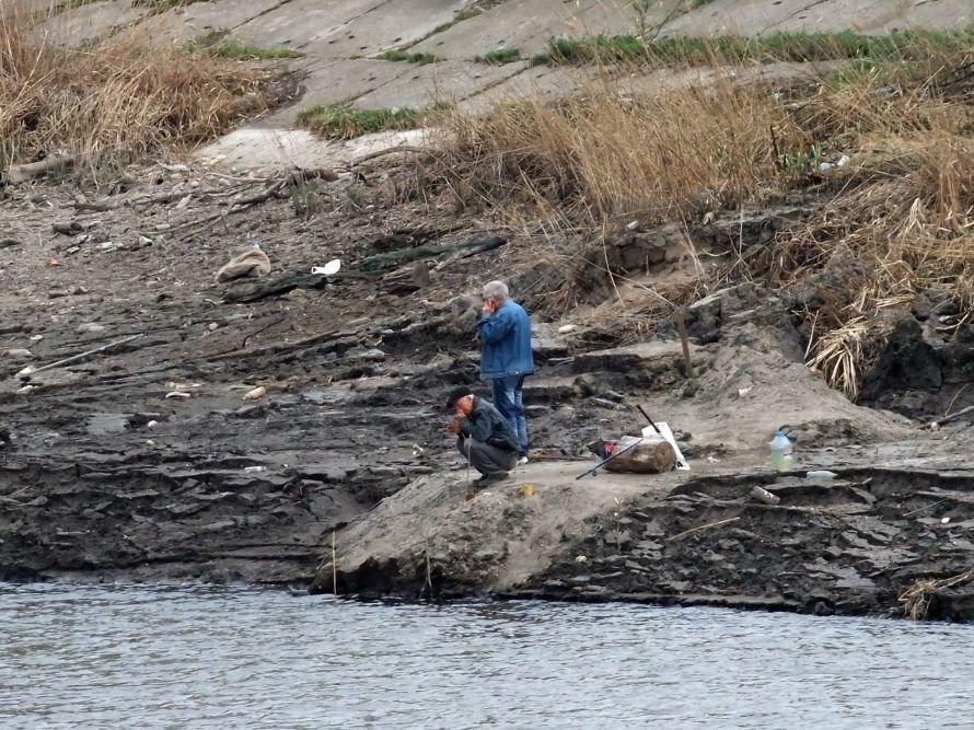 В Донецке ради строительства частной школы Ахметова временно осушили городской пруд (фото), фото-4