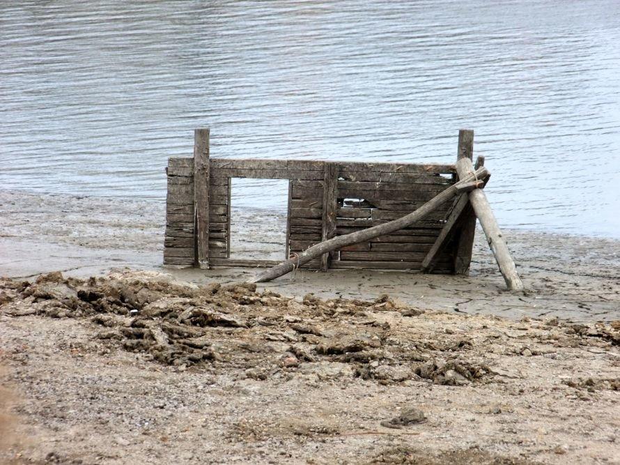 В Донецке ради строительства частной школы Ахметова временно осушили городской пруд (фото), фото-7