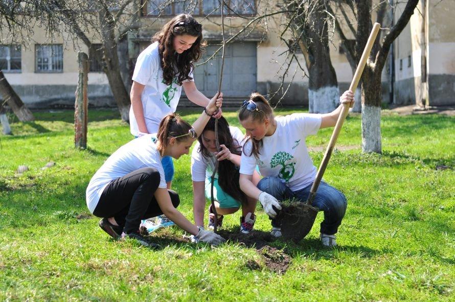 У Львові з'явилоь 200 нових дерев
