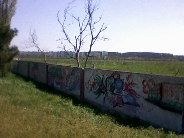 Под Симферополем выкорчевывают яблоневые сады, - общественник (ФОТО), фото-1