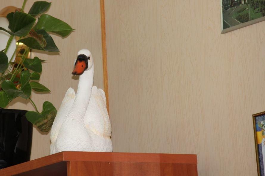 Лебедь на шкафу в кабинете директора ЖКС