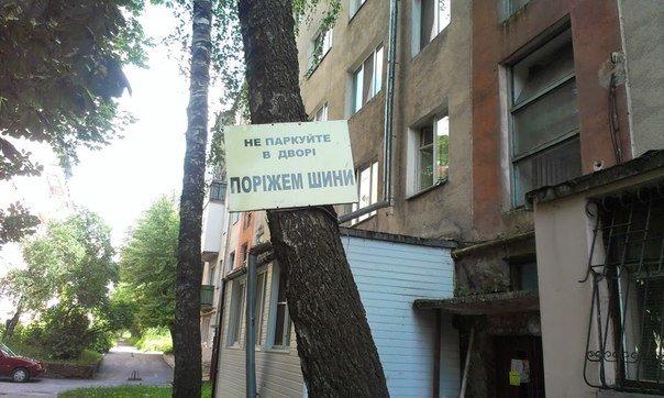 parkuvania33