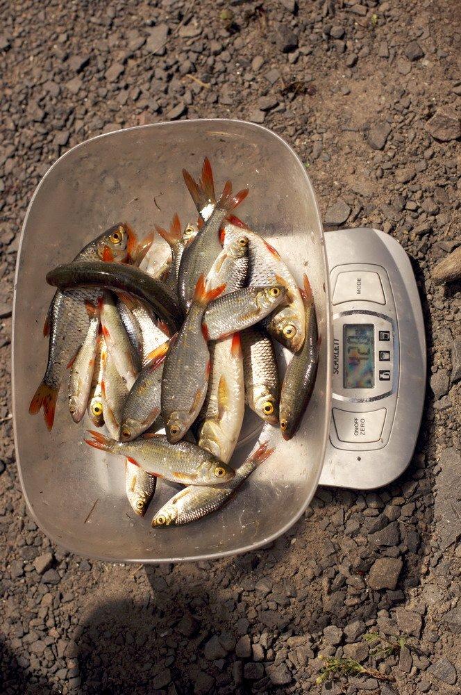 рибалки6