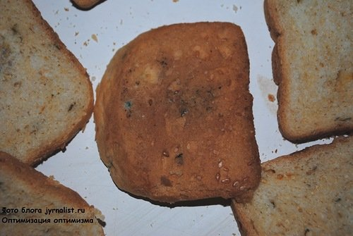 хлеб с плесенью1