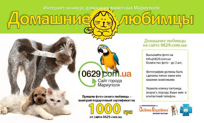 0629matroskin-wide (1)