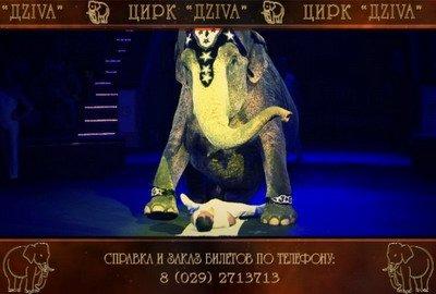 цирк_03