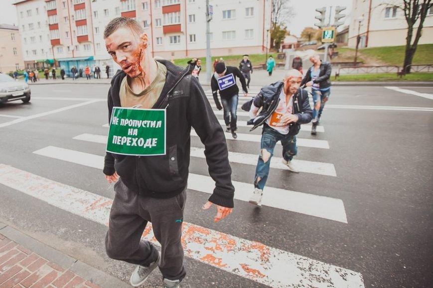 гродно зомби на дорогах