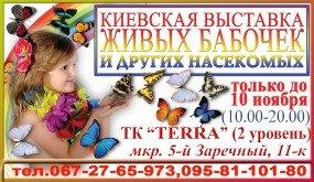 cisafisha_138199508584