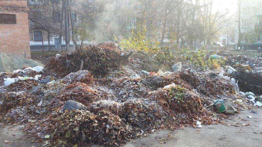 Свалка мусора ул. Паустовского  34(2)