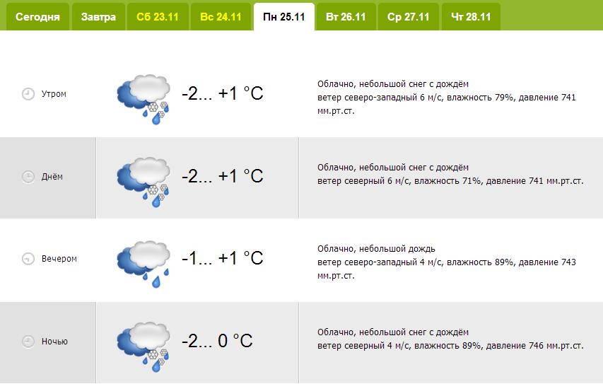 20131122_гродно_погода_зима-1