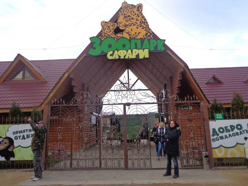 В бердянском зоопарке «Сафари» появился первый легальный гепард на Украине (ФОТО), фото-4