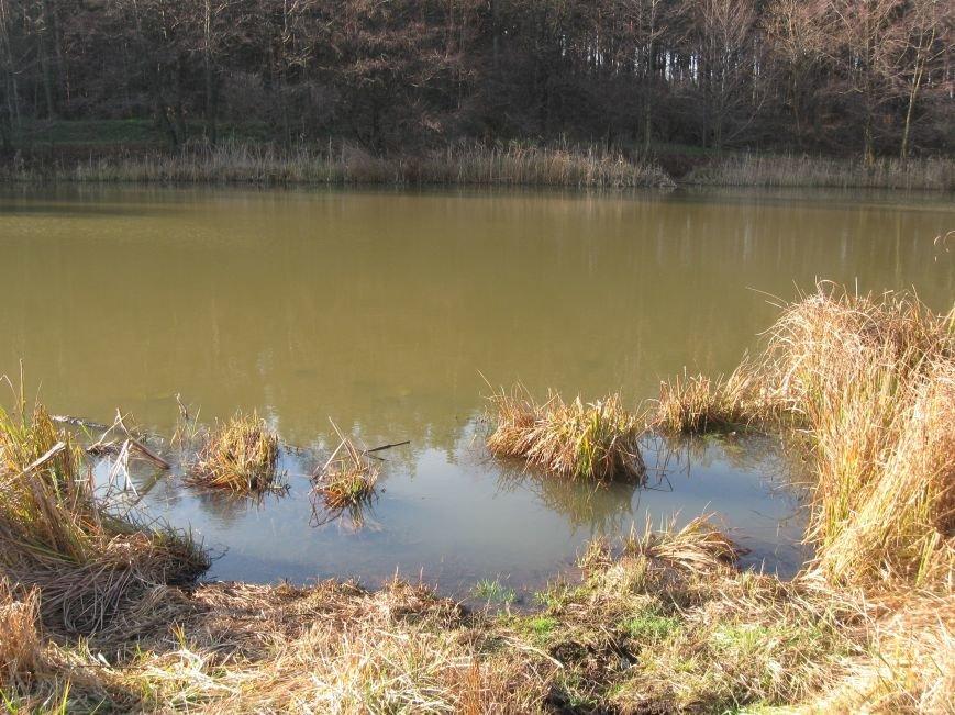 Экологическая катастрофа на Черкасщине, фото-7