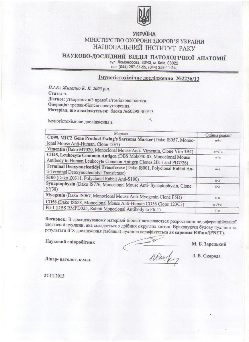 лиц  понч стр2 002 (1) (2)