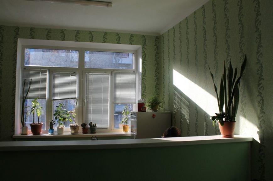Артемовский ЖЭК «Наш дом+» занимается энергосбережением, фото-5