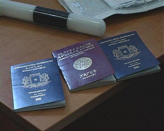 Нелегалы на такси пробирались в Луганск (ФОТО), фото-1