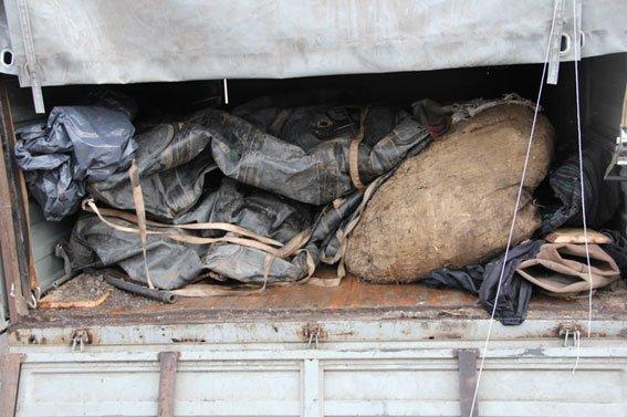 На севере Черниговщины задержаны наглые браконьеры (ФОТО), фото-1