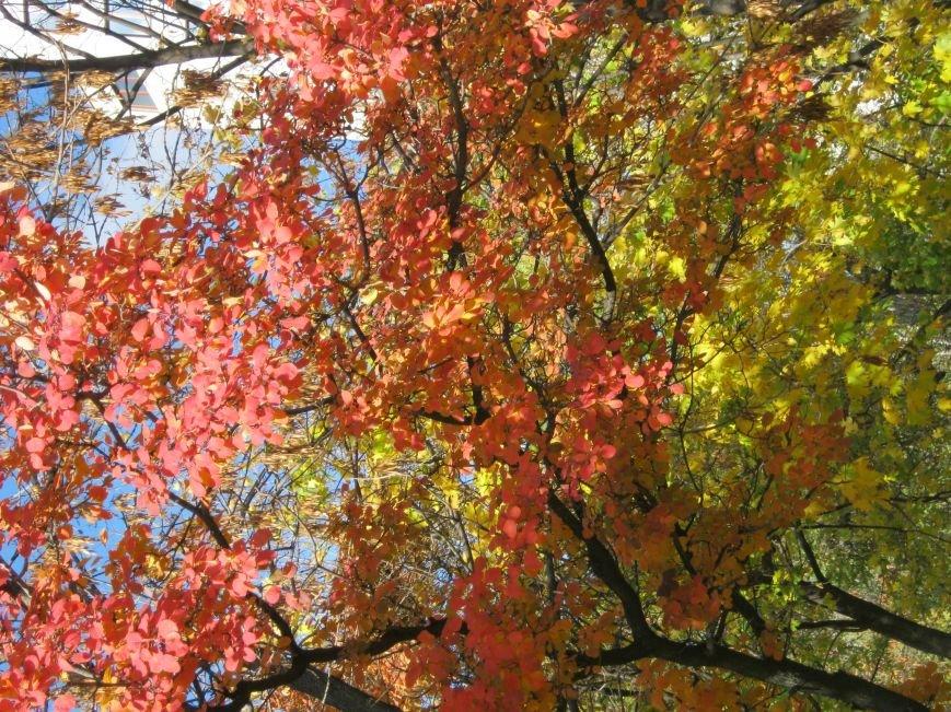 Колоритная осень